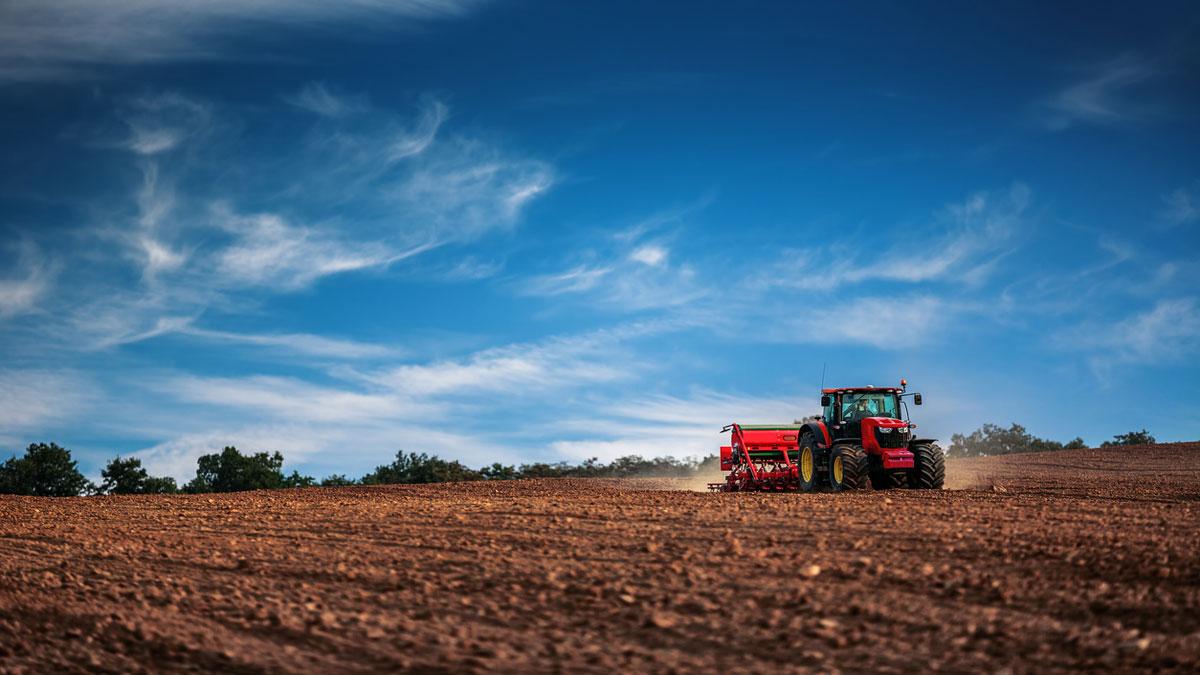Diez ideas rompedoras que transformarán la industria de la agroalimentación - Emprendedores.es